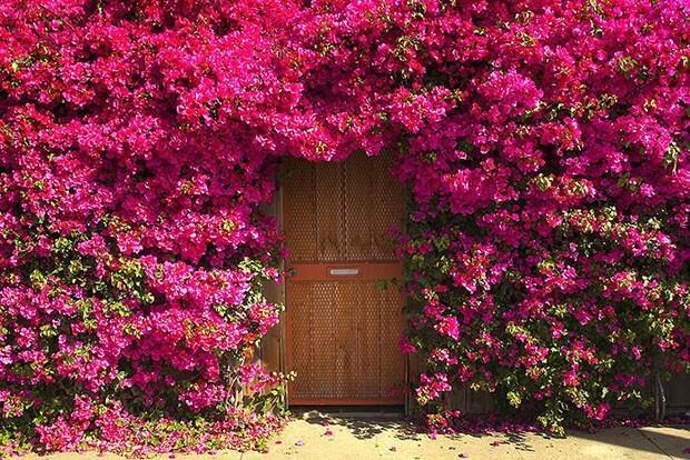 portas_inspiradoras_18